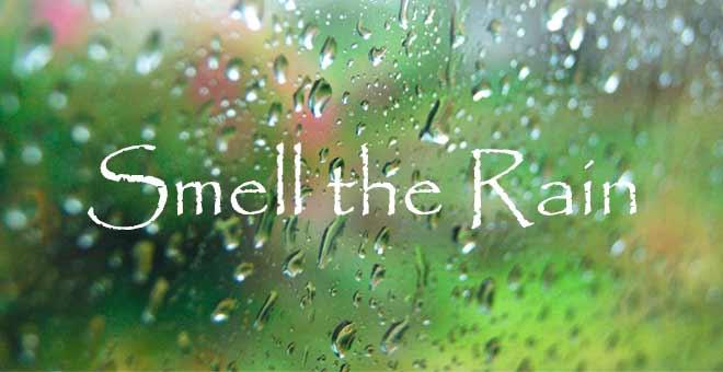 Rainy-Day-fade