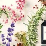 گروه بویایی آروماتیک aromatic