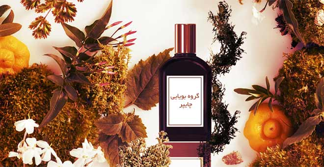 Chypre-Fragrance-چایپر-Hyperatr