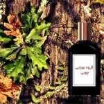 گروه بویایی چوبی woody در عطر و ادکلن