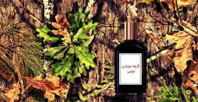 Woody-Fragrance-چوبی-Hyperatr
